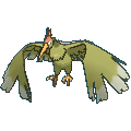 Pokemon #022 - Fearow (Shiny)