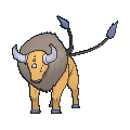 Image for #128 - Tauros
