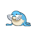 Pokemon #364 - Sealeo