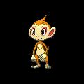 Pokemon #390 - Chimchar