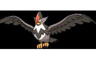 Pokemon #398 - Staraptor