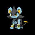Pokemon #404 - Luxio