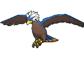 Pokemon #628 - Braviary (Shiny)