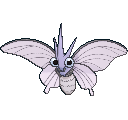 Pokemon #049 - Venomoth