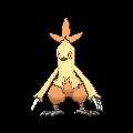 Pokemon #256 - Combusken