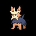 Pokemon #507 - Herdier