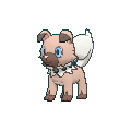 Pokemon #744 - Rockruff