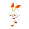 Pokemon #813 - Scorbunny