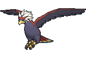 Pokemon #628 - Braviary